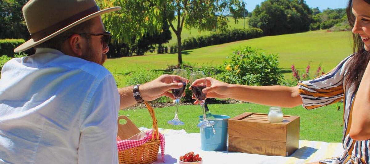 A couple toast with a glass of wine at a picnic