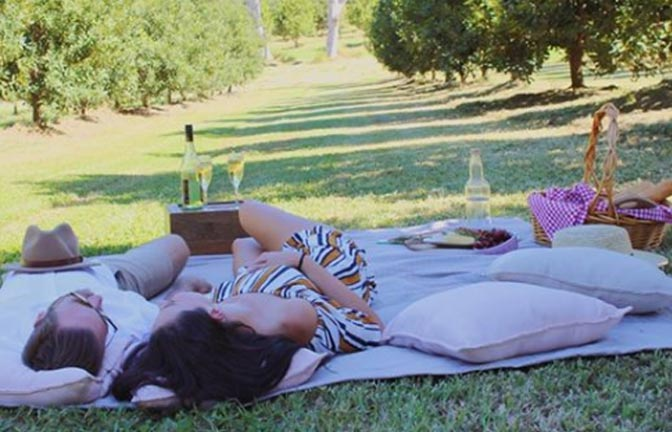 A couple relaxing on a picnic blanket in a shady orchard