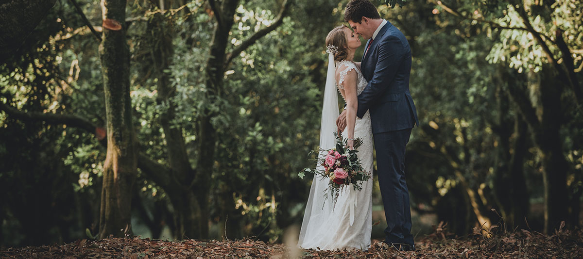 A bride and groom embrace under spreading green trees